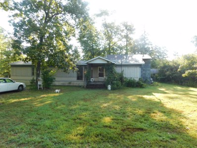 13036 County Road Od, Mountain View, MO 65548 - MLS#: 60145533