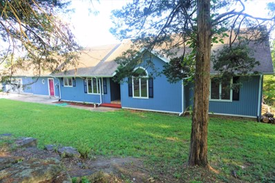 176 Oak Tree Acres Lane, Branson, MO 65616 - MLS#: 60146326
