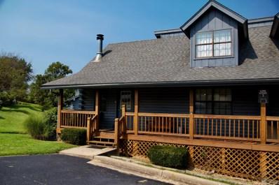 3 Cabin Court UNIT 1, Branson, MO 65616 - MLS#: 60146762