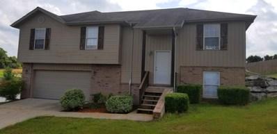 1401 S 13th Street, Ozark, MO 65721 - MLS#: 60146849