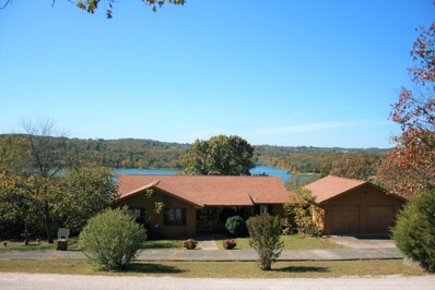 133 Peach Tree Drive, Cape Fair, MO 65624 - MLS#: 60150436