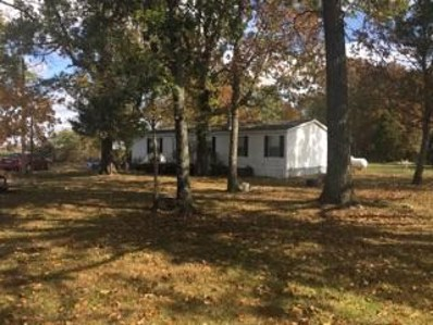 6452 State Hwy Vv, Rogersville, MO 65742 - MLS#: 60150834