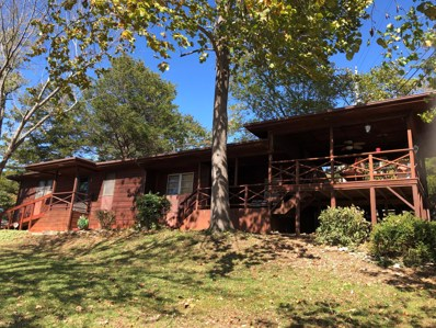 8 Fairview Drive, Cape Fair, MO 65624 - MLS#: 60151252