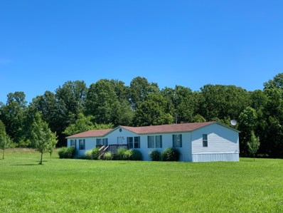 14320 Private Rd 6601, Moody, MO 65777 - MLS#: 60151493