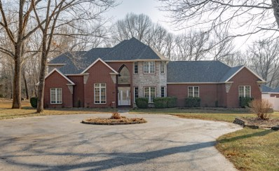 2458 W Pebble Creek Drive, Nixa, MO 65714 - MLS#: 60153110