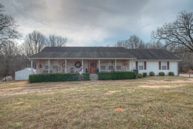 12899 Mulberry Road, Neosho, MO 64850 - MLS#: 60153131