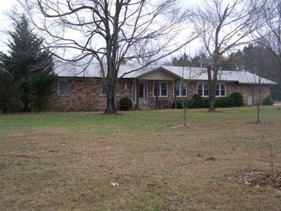 10782 South State Route 17, West Plains, MO 65775 - MLS#: 60153276