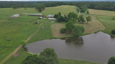 1435 Country Road 359, Thayer, MO 65791 - MLS#: 60153743