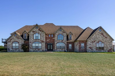 250 Aviation, Ozark, MO 65721 - MLS#: 60154167