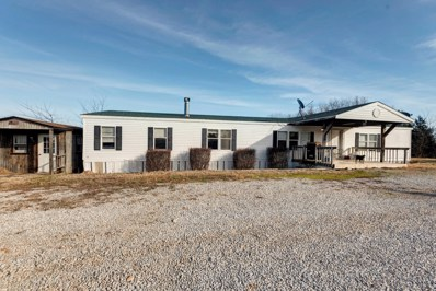 124 Viewpoint Lane, Crane, MO 65633 - MLS#: 60154191