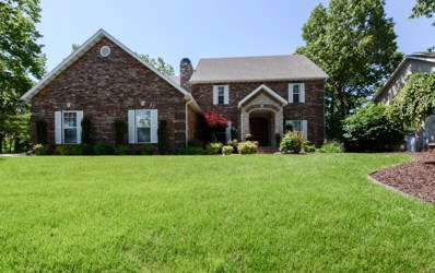 270 Country Bluff Drive, Branson, MO 65616 - MLS#: 60154456