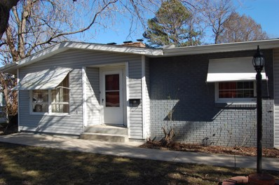 520 Eiserman Avenue, Branson, MO 65616 - MLS#: 60157346