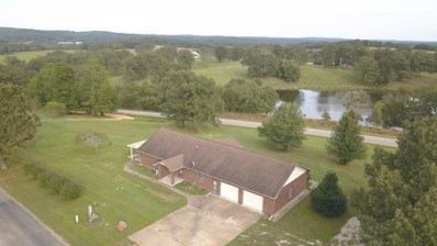 101 Laurel Avenue, Alton, MO 65606 - MLS#: 60158537