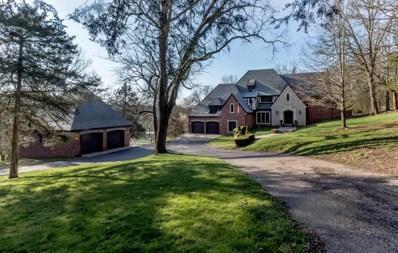 5919 S Farm Rd 183, Rogersville, MO 65742 - MLS#: 60159767