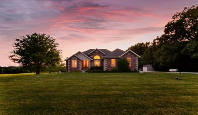 4891 N Farm Rd 249, Strafford, MO 65757 - MLS#: 60159928