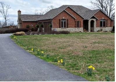 8 Mission Ridge, Reeds Spring, MO 65737 - MLS#: 60160256
