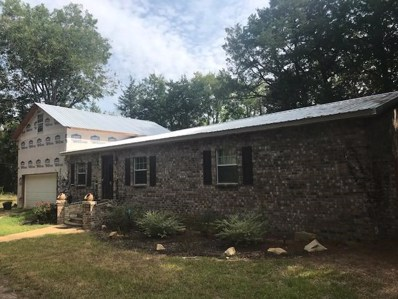 987 Collier Rd, Starkville, MS 39759 - MLS#: 18-1819