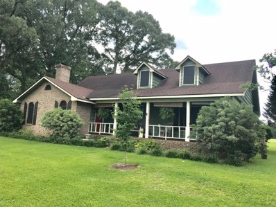 116 Pure Country Dr, Lucedale, MS 39452 - MLS#: 326443