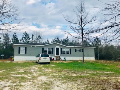 18 Treasure Trl, McHenry, MS 39561 - MLS#: 330812