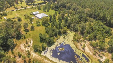 75 Percy Oneal Rd, McHenry, MS 39561 - MLS#: 337360