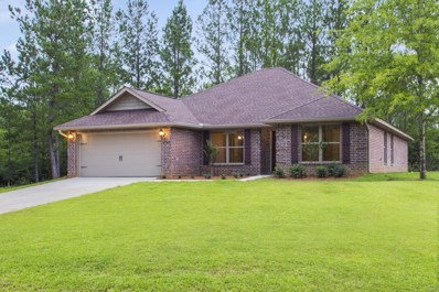 58 Summit View Dr, McHenry, MS 39561 - MLS#: 337492