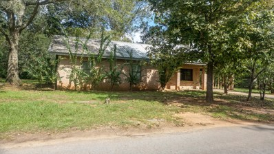 246 Jane Dr, Lucedale, MS 39452 - MLS#: 339990