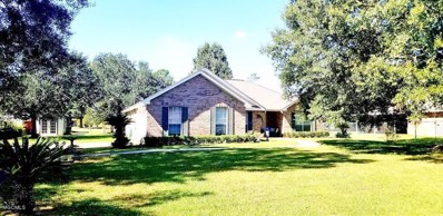 115 Summit Dr, Carriere, MS 39426 - MLS#: 340742
