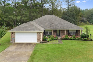 86 Eagle Heights Dr, Picayune, MS 39466 - MLS#: 341022