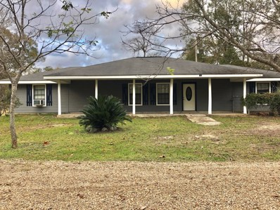 160 Terry Ln, Carriere, MS 39426 - MLS#: 341684