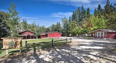 715 Holly Valley Ln, Red Lodge, MT 59068 - #: 290944
