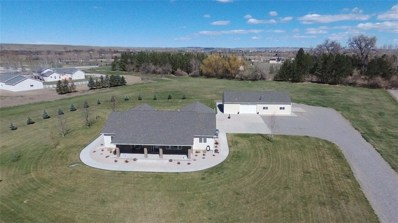 93 Evergreen Drive, Joliet, MT 59041 - #: 294590