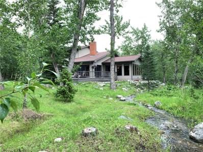 2 Bobcat Lane, Red Lodge, MT 59068 - #: 298387