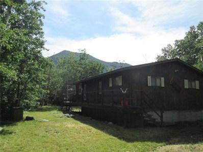 7 Twin Bear Lane, Red Lodge, MT 59068 - #: 301740