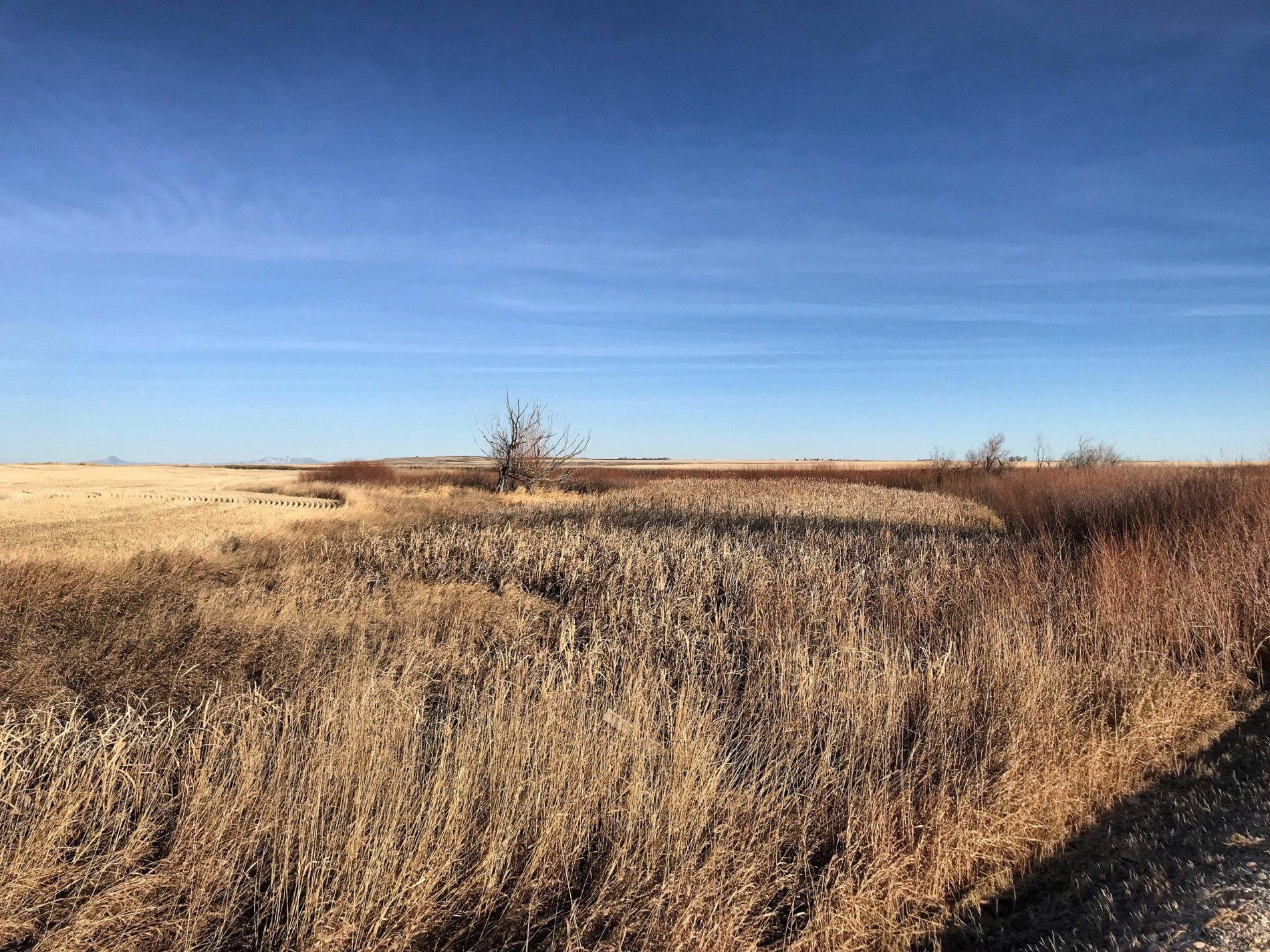 5744  Dry Fork Road, Conrad