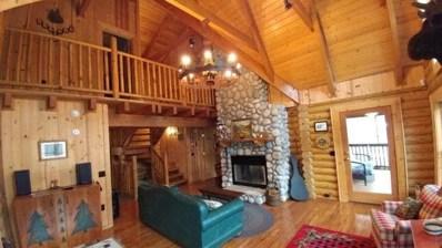 869 Indian Lake Drive, Nantahala, NC 28781 - MLS#: 125631