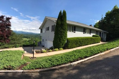 317 Windy Ridge Lane, Hayesville, NC 28904 - MLS#: 128738