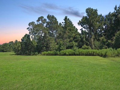 1718 Rockhill Road, Castle Hayne, NC 28429 - MLS#: 100079809
