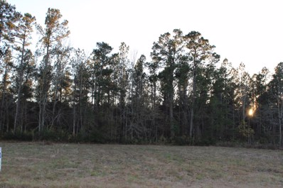 .4 Ac Rough And Ready Road, Cerro Gordo, NC 28430 - MLS#: 100094478