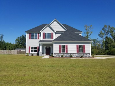 100 Falken Court, New Bern, NC 28562 - MLS#: 100101437