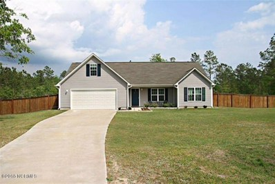 157 Ashbury Park Lane, Richlands, NC 28574 - MLS#: 100103114