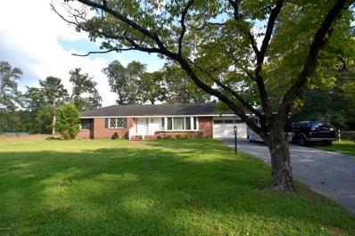 404 W Wilson Creek Drive, New Bern, NC 28562 - MLS#: 100105830