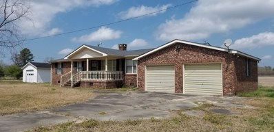 3846 Wyse Fork Road, Dover, NC 28526 - MLS#: 100113355