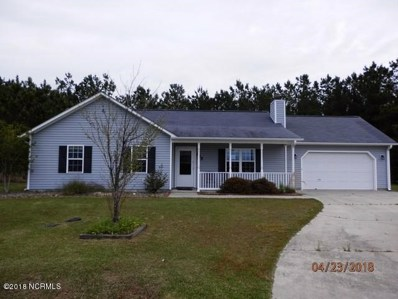 325 Top Knot Road, Hubert, NC 28539 - MLS#: 100113868