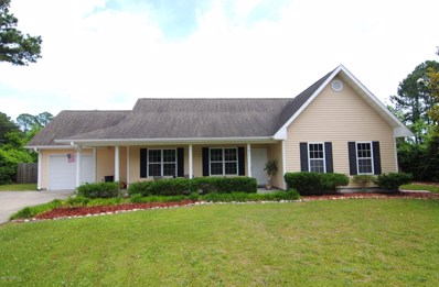 910 Spring Branch Road, Wilmington, NC 28405 - MLS#: 100116378