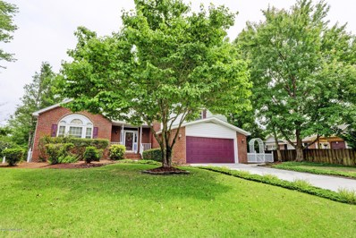 7002 Brittany Lakes Drive, Wilmington, NC 28411 - MLS#: 100119898