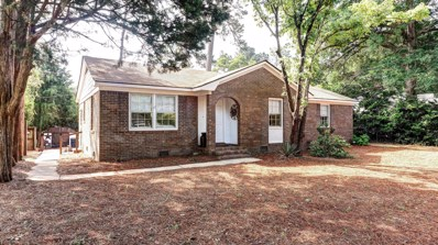 101 Balsam Drive, Wilmington, NC 28409 - MLS#: 100120084