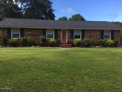 228 Roberts Road, Newport, NC 28570 - MLS#: 100131345