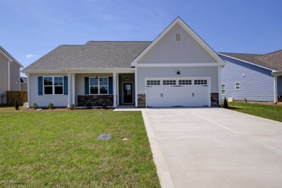 1316 Teddy Road, Castle Hayne, NC 28429 - MLS#: 100131800