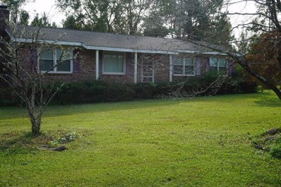 605 Little Macedonia Road NW, Supply, NC 28462 - MLS#: 100139185