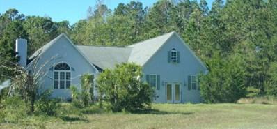 2911 Peter Springs Drive, Castle Hayne, NC 28429 - MLS#: 100139807